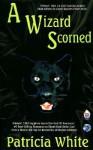 A Wizard Scorned - Patricia Lucas White