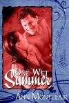 One Wet Summer - Ann Montclair