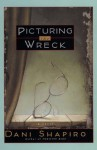 Picturing The Wreck - Dani Shapiro