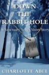 Down the Rabbit Hole - Charlotte Abel