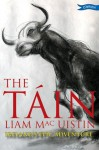 The Táin: Ireland's Epic Adventure - Liam Mac Uistín, Donald Teskey
