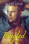 The TANGLED Billionaire (Book 1, An Alpha Billionaire Romance) - Mary Jane
