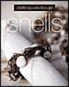 Crafting on the Go: Shells - Trisha Malcolm