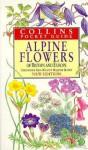 Alpine Flowers of Britain and Europe - Christopher Grey-Wilson, M. Blamey