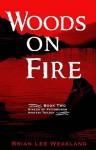 Woods On Fire - Brian Lee Weakland