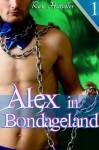 Alex in Bondageland (Gay Fantasy Gangbang Erotica) - Rex Handler