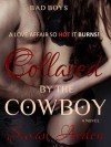 Collared by the Cowboy - Susan Arden