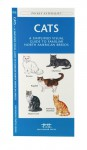 Cats: A Simplified Visual Guide to Familiar North America Breeds - James Kavanagh, Raymond Leung