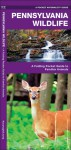 Pennsylvania Wildlife: An Introduction to Familiar Species of Birds, Mammals, Reptiles, Amphibians, Fish and Butterflies (State Nature Guides) - James Kavanagh, Raymond Leung