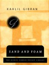 Sand and Foam - Kahlil Gibran