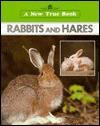 Rabbits and Hares - Emilie U. Lepthien