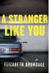 A Stranger Like You - Elizabeth Brundage