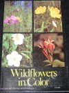Wildflowers in Color - Arthur Stupka