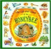 The Life and Times of the Honeybee - Micucci, Charles Micucci, Judy Levin