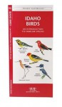 Idaho Birds: A Folding Pocket Guide to Familiar Species (Pocket Naturalist Guide Series) - James Kavanagh, Raymond Leung
