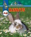 Rabbits - Slim Goodbody, Ben McGinnis