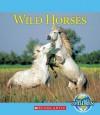 Wild Horses - Katie Marsico