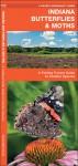 Indiana Butterflies & Moths: A Folding Pocket Guide to Familiar Species - James Kavanagh, James Kavanagh, Raymond Leung