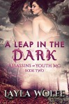A Leap in the Dark (The Assassins of Youth MC Book 2) - Layla Wolfe, Natasha Snow