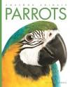 Parrots - Valerie Bodden