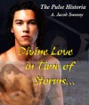 Divine Love in Time of Storms - A. Jacob Sweeny