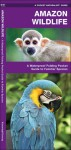 Amazon Wildlife: A Waterproof Pocket Guide to Familiar Species - James Kavanagh, Raymond Leung