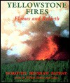 Yellowstone Fires: Flames and Rebirth - Dorothy Hinshaw Patent