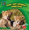 Cheetahs - Katie Marsico