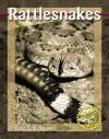 Rattlesnakes - Adele Richardson