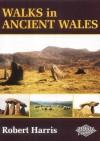 Walks in Ancient Wales - Robert Harris