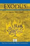 Exodus (New Cambridge Bible Commentary) - Carol Meyers