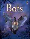 Bats - Megan Cullis, Sue King, Connie McLennan, Helen Edmonds, Sam Chandler