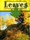 Leaves - Lynn M. Stone