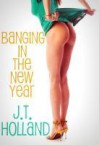 Banging in the New Year Holiday -- Hook-Up: Volume One - JT Holland