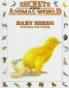 Baby Birds: Growing And Flying (Secrets Of The Animal World) - Eulalia Garcia