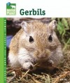 Gerbils (Animal Planet Pet Care Library) - Sue Fox