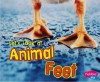 Let's Look at Animal Feet - Wendy Perkins, Gail Saunders-Smith, Suzanne B. McLaren