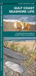 Gulf Coast Seashore Life: A Folding Pocket Guide to Familiar Plants and Animals - James Kavanagh