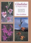 Gladiolus in Tropical Africa: Systematics, Biology and Evolution - Peter Goldblatt, John C. Manning