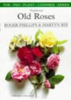 Traditional Old Roses and How to Grow Them - Roger Phillips, Martyn Rix