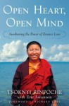 Open Heart, Open Mind: Awakening the Power of Essence Love - Tsoknyi Rinpoche, Eric Swanson