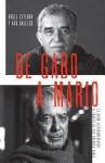 de Gabo a Mario: Una Breve Historia del Boom Latinoamericano - Ángel Esteban, Ana Gallego