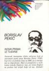 Nova pisma iz tudine - Borislav Pekić