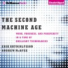 The Second Machine Age: Work, Progress, and Prosperity in a Time of Brilliant Technologies - Erik Brynjolfsson, Andrew McAfee, Jeff Cummings