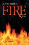 Encyclopedia of Fire - David E. Newton