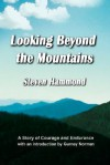 Looking Beyond the Mountains - Steven Hammond