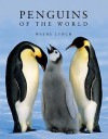 Penguins Of The World - Wayne Lynch
