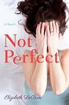 Not Perfect: A Novel - Elizabeth LaBan
