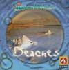 Beaches - JoAnn Early Macken