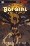 Batgirl: Batgirl Rising - Bryan Q. Miller, Lee Garbett, Trevor Scott